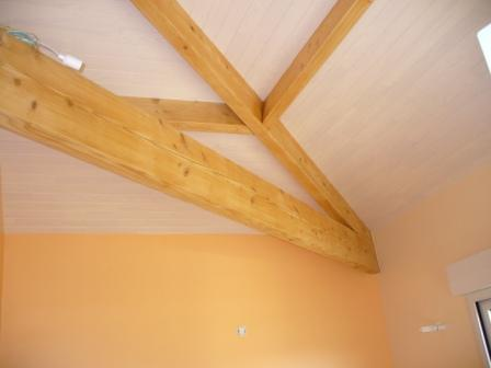 Domaines activites intervention for Pose de lambris au plafond